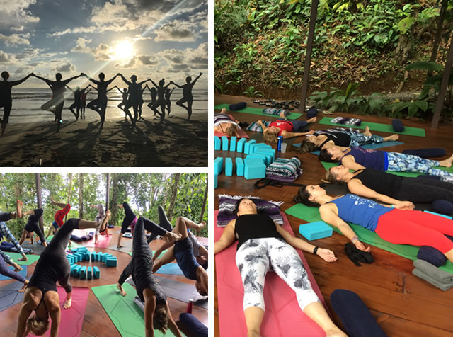 Kick Off The New Year With An All Women S Yoga Retreat With Sue Park